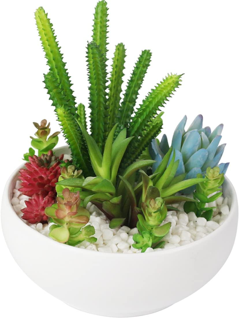 Myartte Home Decor Office Decor-Artificial Shrubs Artificial Succulent Plants Mini Fake Plants for Beautifying Our Life and Home Environment (White B)