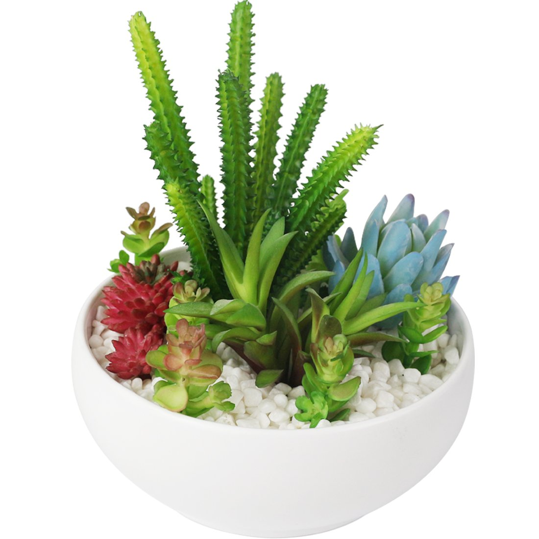 Myartte Colorful Artificial Succulent Plants Collection with White Resin Bowl for Home Decor/Office Decoration
