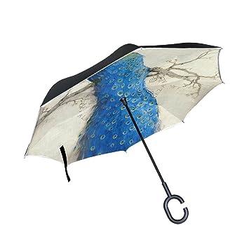jstel doble capa puede Retro Pluma de pavo real paraguas ...