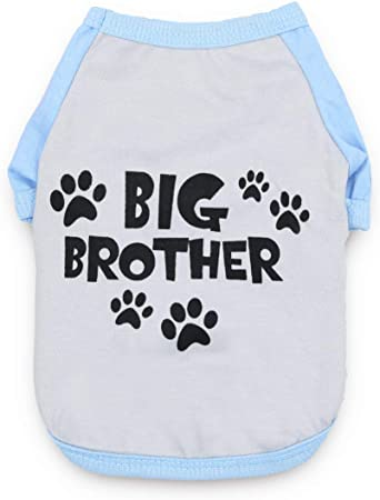 My Brother Is A Pug Dog Kids Cotton T-Shirt Boy Girl Puppy 6 Colours Or Sister