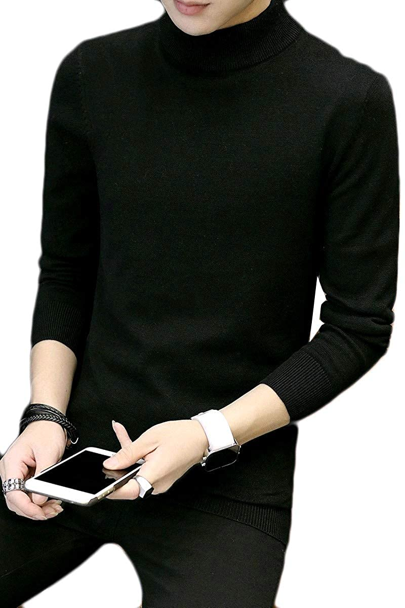 YUNY Mens Knitwear Solid Turtleneck Pullover Top Tee Sweater 4 M