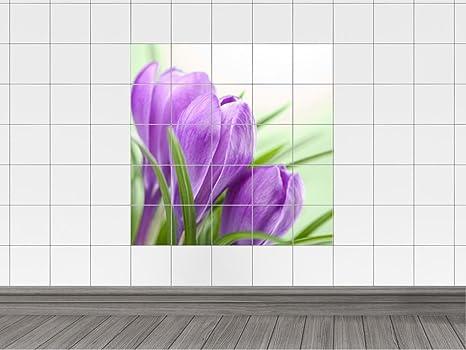 Piastrelle adesivo piastrelle immagine krokusse lilla con mazzo di