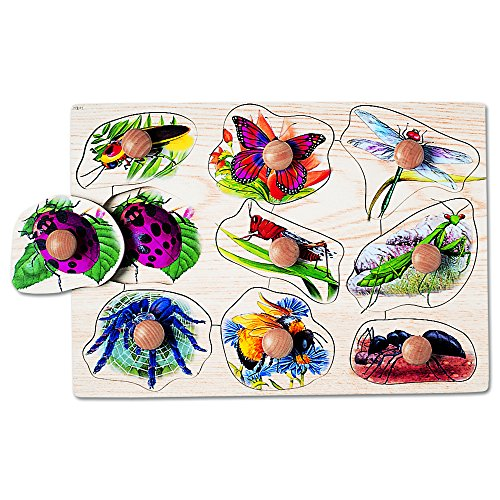 Insects Wooden Chunky Puzzle (Constructive Playthings MYK-923 Jumbo Knob See-Inside Puzzles - Insects)