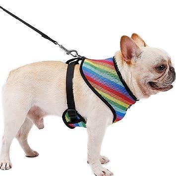 XIAO Arnés para Mascotas para Mascotas Pequeñas/Midium Pets Arnés ...