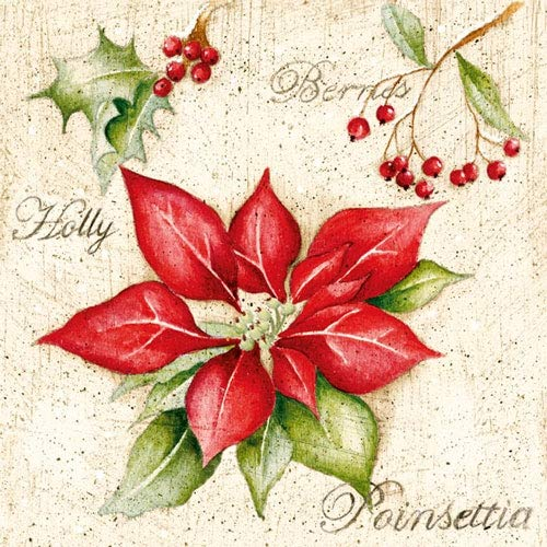 4 Paper Napkins for Decoupage - 3-ply, 33 x 33cm - Christmas - Poinsettia (4 Individual Napkins for Craft and Napkin Art.) Tigers on the Loose