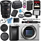 Sony Alpha a6300 Mirrorless Digital Camera (Silver) ILCE-6300/S + Sony FE 16-35mm f/2.8 GM Lens SEL1635GM + NP-FW50 Replacement Lithium Ion Battery + External Rapid Charger Bundle