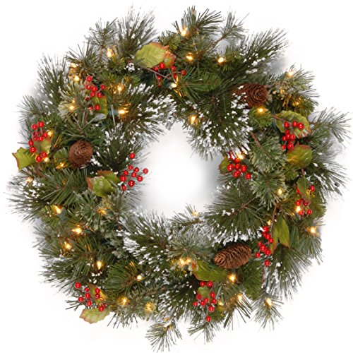 Christmas Wreath Light (National Tree 24