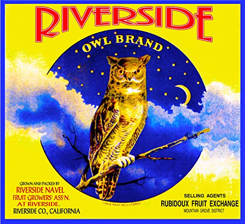 - A SLICE IN TIME Riverside Owl Rubidoux Orange Citrus Fruit Crate Label Art Print