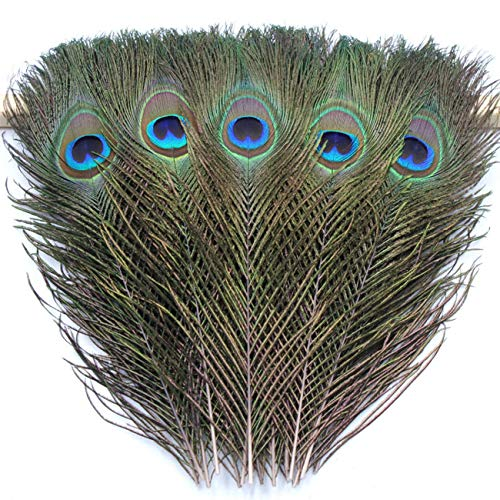 TinaWood 10PCS Real Natural Peacock Eye Feathers 9.8-11.8 inch for DIY Craft, Wedding Holiday Decoration -