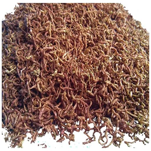 Freeze Dried Bloodworms, Clean Fresh 100% Bloodworms. Aquatic Foods Freeze Dried Tropical Fish Foods