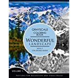 Wonderful Landscape Volume 1: Grayscale coloring books for adults Relaxation (Adult Coloring Books Series, grayscale fantasy coloring books)