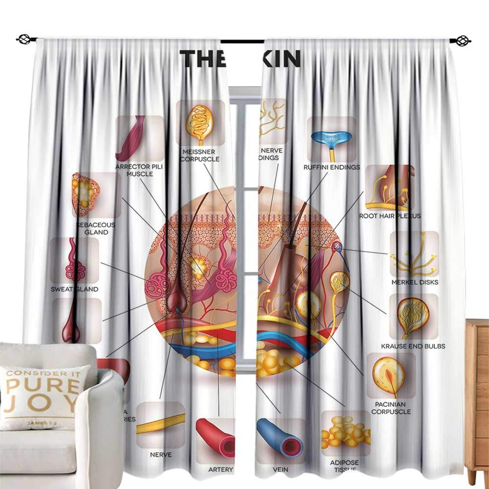 cobeDecor Insulated Room Blackout Curtain Educational Skin Anatomy Elements in Round Shaped Diagram Pores Hair Roots Veins Sensory Multicolor Simple Style W84 xL84