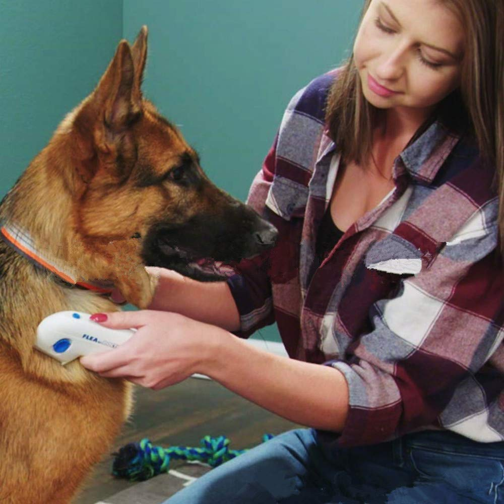 Y&J Flea Doctor Comb Electric Dog Anti Flea Comb Head Lice Remover Pets Flea Control Flea&tick Killer Pets Products by Y&J (Image #5)