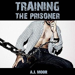 Training the Prisoner Audiobook