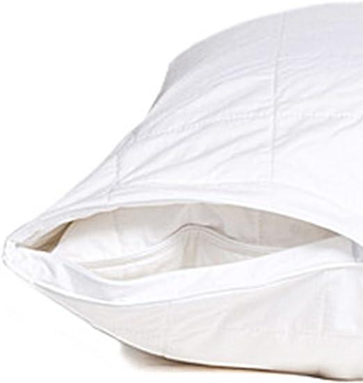 Amazon Com Smartsilk Pillow Protector 2 Pack Standard All