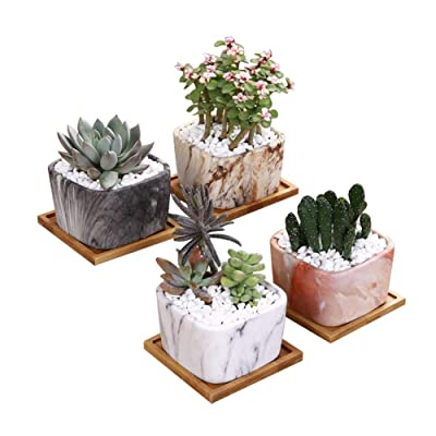 3.5 Inch Square Plant Pots – Marbling Ceramic Succulent Planter with Bamboo Tray and Drainage Hole – Set of 4 : Garden & Outdoor