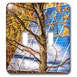 3dRose Alexis Photo-Art - Objects - Blue solar power panel in the autumn forest. Photosynthesis - Light Switch Covers - double toggle switch (lsp_270321_2)