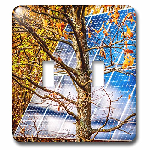 3dRose Alexis Photo-Art - Objects - Blue solar power panel in the autumn forest. Photosynthesis - Light Switch Covers - double toggle switch (lsp_270321_2) by 3dRose