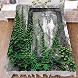 iPrint Bed Skirt Dust Ruffle Bed Wrap 3D Print,with Aged Antique Empty Picture Frame as Window,Fashion Personality Customization adds Color to Your Bedroom. by 94.5''x102.3''