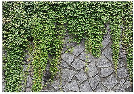 murando Fotomurales 50x35 cm XXL Papel pintado tejido no tejido Decoraci/ón de Pared decorativos Murales moderna Diseno Fotogr/áfico pared pierdas pared hiedra b-a-0173-a-b
