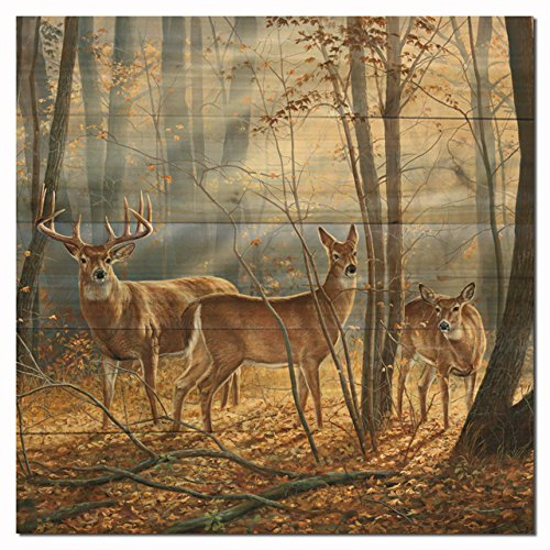 WGI-GALLERY WA-WS-1212 Woodland Splendor Wall Art