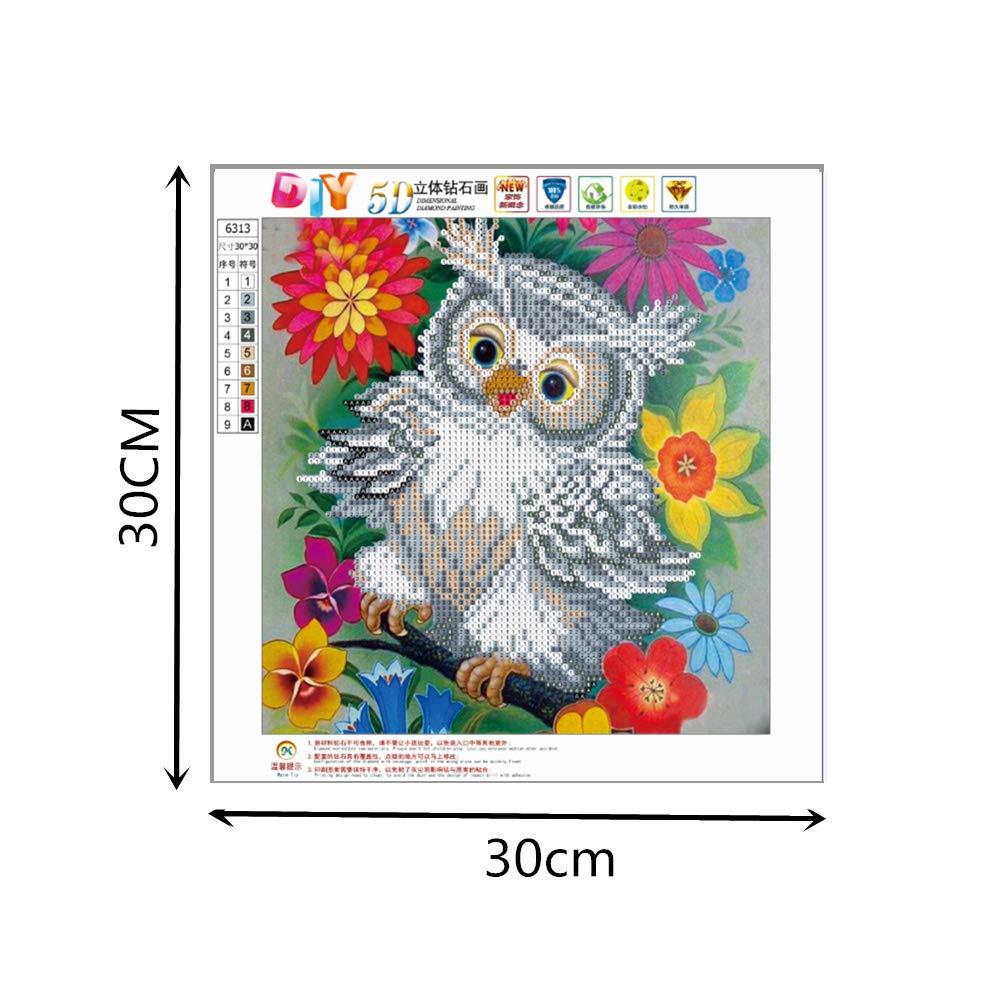 DIY 5D Diamond Painting Cartoon owl E feilin Diamond Embroidery Rhinestone Painting Cross Stitch Kit Wall Art Decor 5D Diamond Painting by Number Kits Home Decor 30x30cm