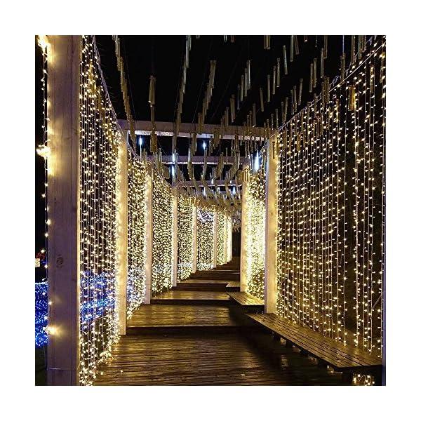 Tomshine Tenda Luci LED 3 x 3 meters, 300 LEDs con Luci Natale Tenda, IP65, 8 Programmi di Luce,Tenda di Luci per Natale, Decorazione Feste, Interni (Bianco Caldo) 7 spesavip