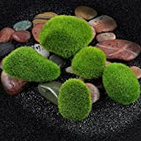 Daytingday Stone Moss Miniature Dollhouse Garden Craft Fairy Bonsai Plant Decor (12 Pack)