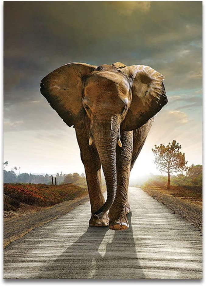 WSWWYPaisaje Africano Elefante Animal Macro Lienzo Cartel ...