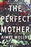 The Perfect Mother: A Novel	 by  Aimee Molloy in stock, buy online here
