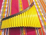 Yzarra Professional Pan Flaute 22 Pipes Natural Bamboo with Case