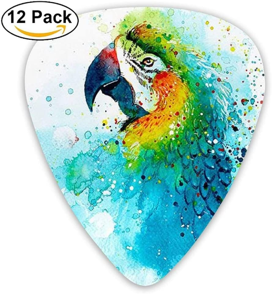 Black Large Poll Parrot Bird Acoustic Guitar Picks 12 Packs: Amazon.es: Instrumentos musicales