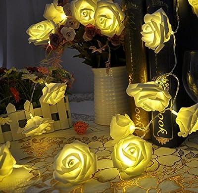 BlingKingdom - 20 LED Battery Operated Rose Flower String Lights Wedding Garden Christmas Decor Bedroom Lounge Fairy Lights (Warm White 1.9m)