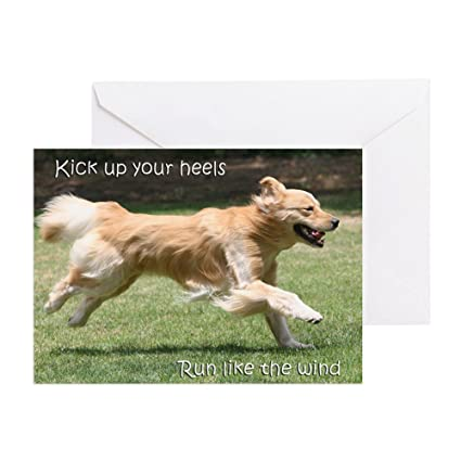 Amazon cafepress golden retriever birthday card run cafepress golden retriever birthday card run greeting card note card birthday m4hsunfo