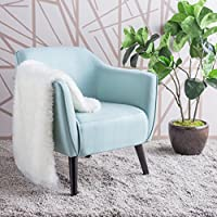 Christopher Knight Home 300035 Alphonse Arm Chair, Light Blue