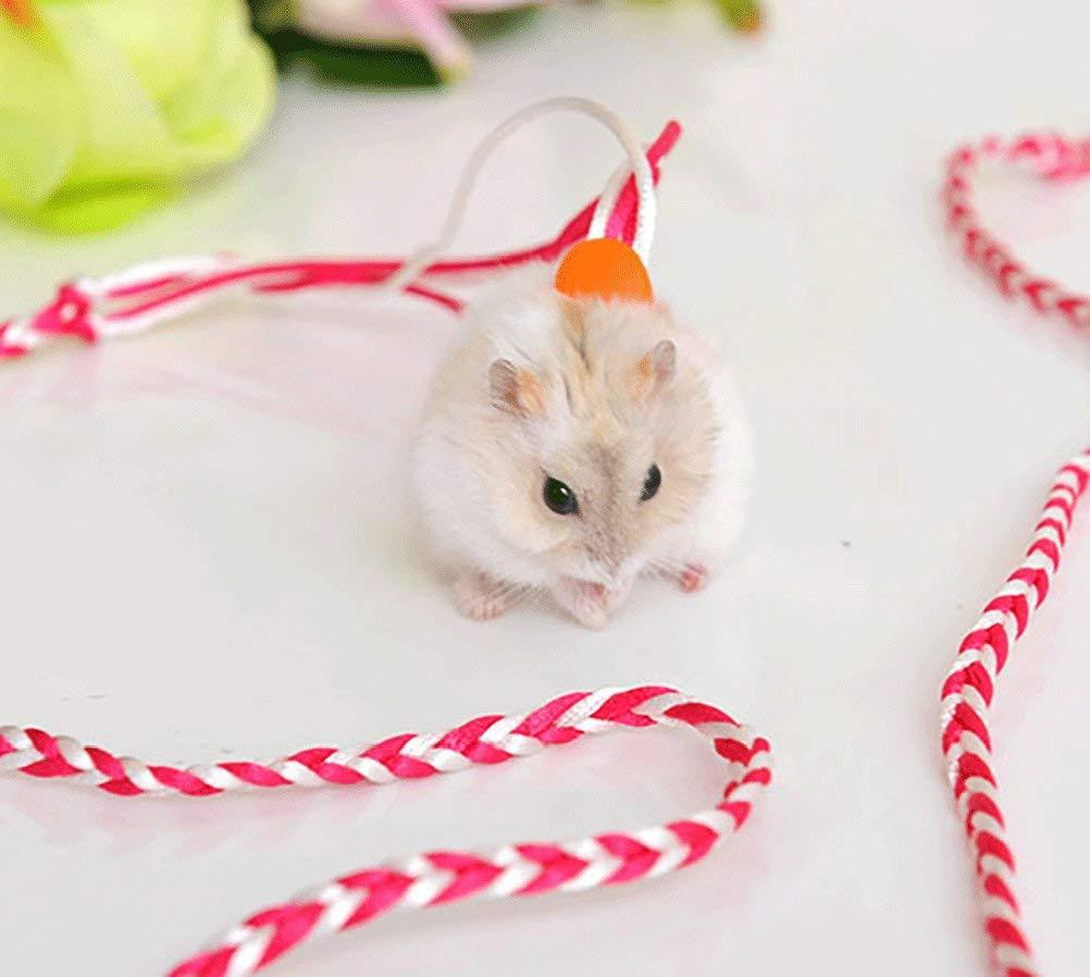 Hamster Gerbil Rata Ratón Chinchillas cobayas Ardilla Pet Juguete ...