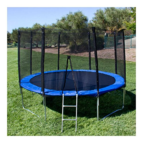 12' Round Trampoline Set With Safety Enclosure, Padding & Ladder from Unknown