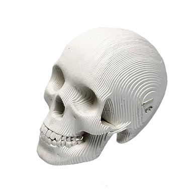 Cardboard Safari Recycled Cardboard Skull 3D Model, Micro Vince White