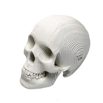 amazon com cardboard safari recycled cardboard skull 3d model rh amazon com