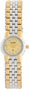 Accurate Casual Watch Analog for Women, Stainless Steel, ALQ066TG