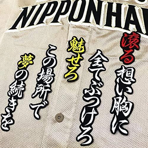 日本ハム ファイターズ 刺繍ワッペン 大田 泰示 応援歌 黒布