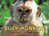 Busy Monkeys (A Busy Book)