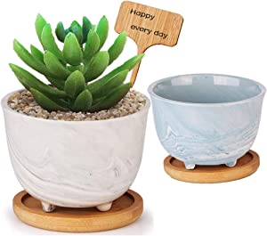 1 Set of YUESUO Succulent Plant Pots - 3.5 Inch Ceramic Marble Flower Pot with Drainage Hole, Small Flower Pot Indoor - with Tray, Insert Card, 2 Pieces