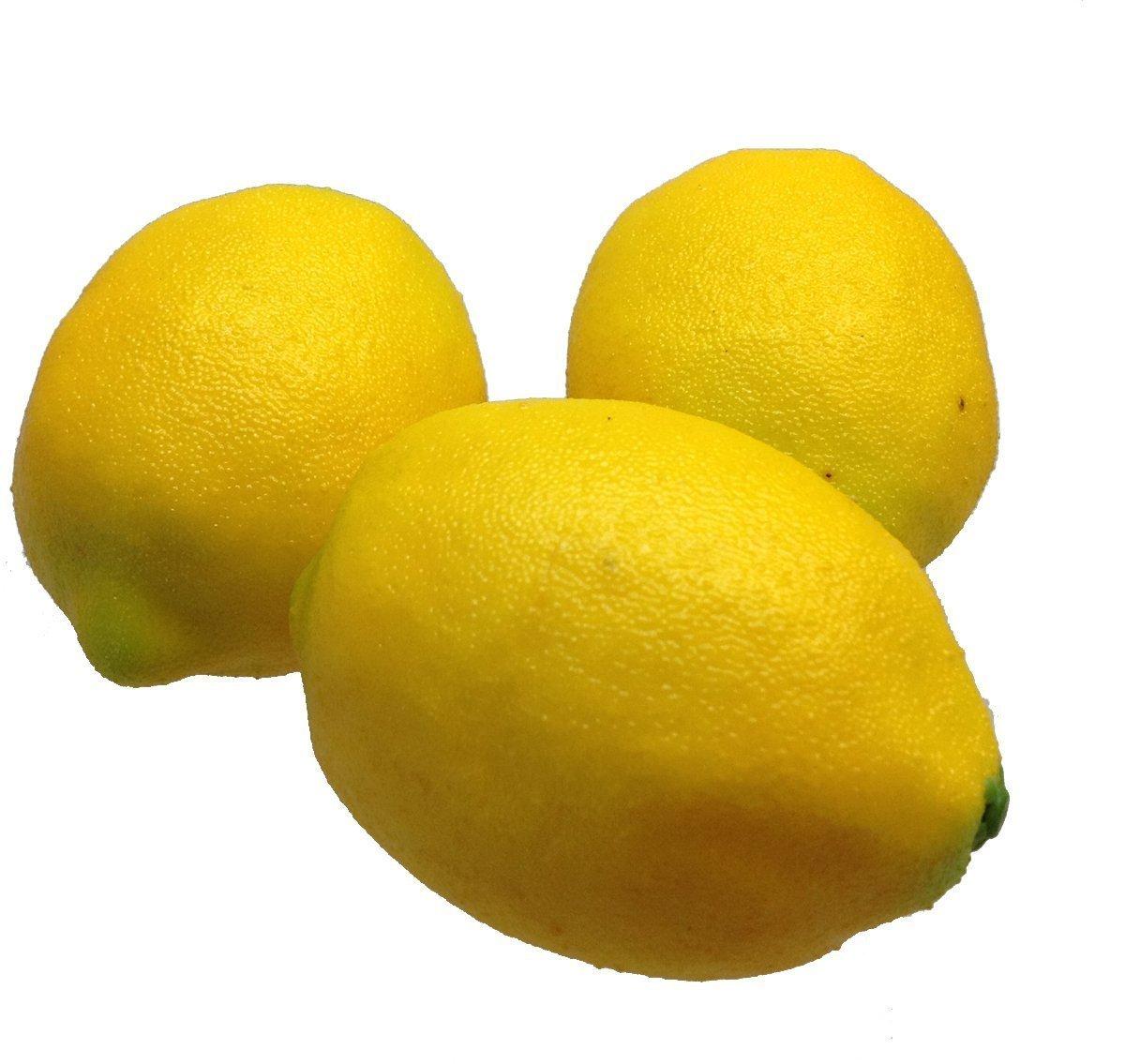 Deko Zitronen gelb 3 Stück Kunstobst Kunstgemüse künstliches Obst Gemüse Dekoration GMMH