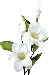 """Floral Kingdom 25"""" Real Touch Artificial Magnolia Flowers for Foral Arrangements, Gift Wrapping, Bouquets, Home/Office Decor (Pack of 2) (White)"""