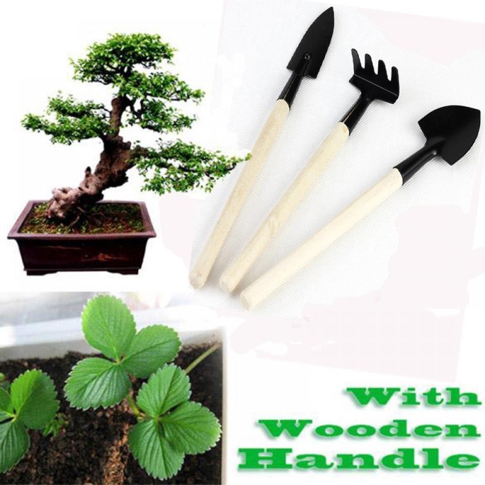 TDDL 3PCS Mini Herramientas de Jard/ín Palas Rastrillos Tenedor Mango de Madera Mini Jard/ín Planta Herramienta Kit Cuidado de Jard/ín