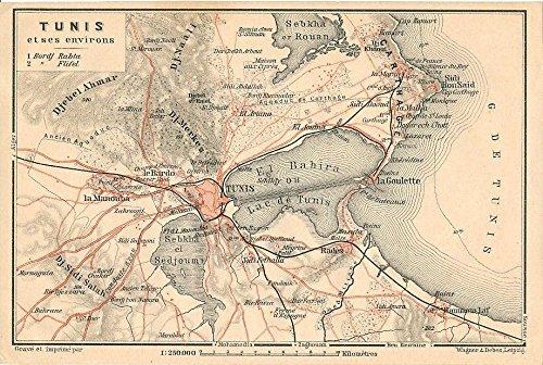 Environs of Tunis Tunisia 1908 detailed antique map