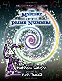 Secrets of Creation: Volume 1: The Mystery of the Prime Numbers
