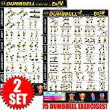 Eazy How To Dumbbell Exercise Workout Poster BIG 51 x 73cm Train Endurance, Tone, Build Strength & Muscle Home Gym Chart