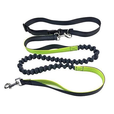 Correa para perros Qijovo con cinturón, para correr, cuerda ...